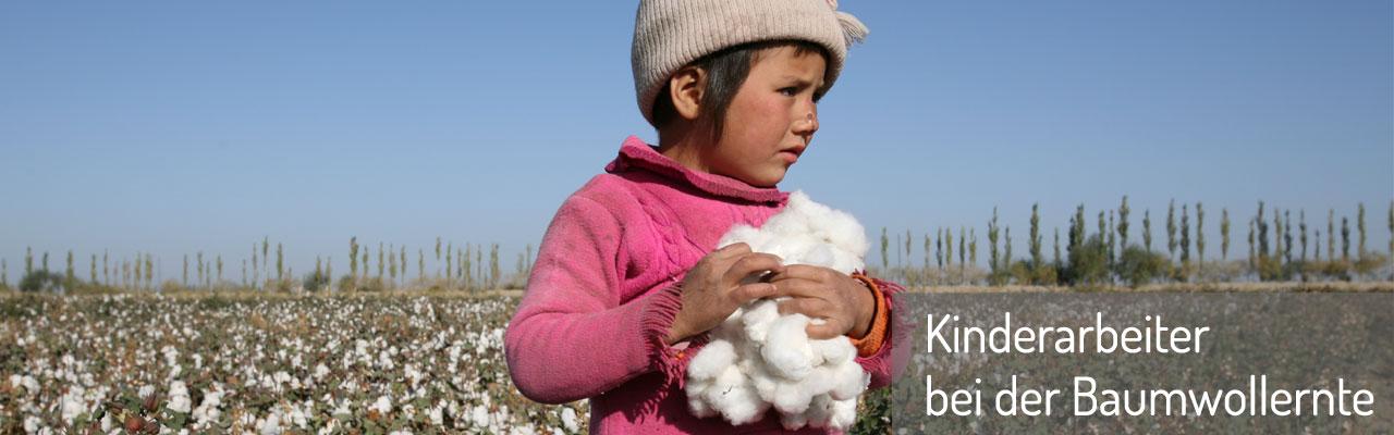 Kinderarbeiter bei der Baumwollernte